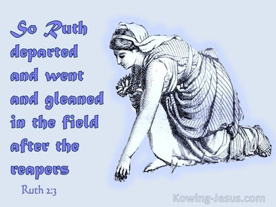 Ruth 2:3  Ruth Departed And Gleaned In The Field (purple)