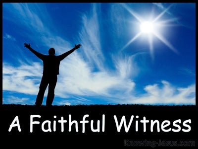 A Faithful Witness (devotional) (blue)