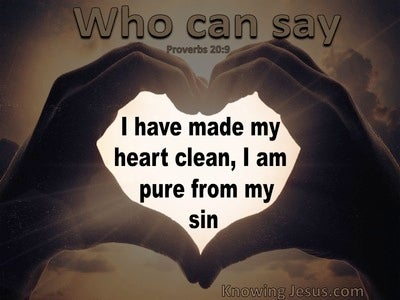Proverbs 20:9 A Clean Heart Pure From Sin (brown)