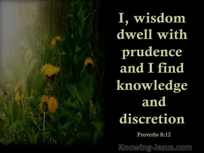 Proverbs 8:12 Wisdom Dwells With Prudence (black)