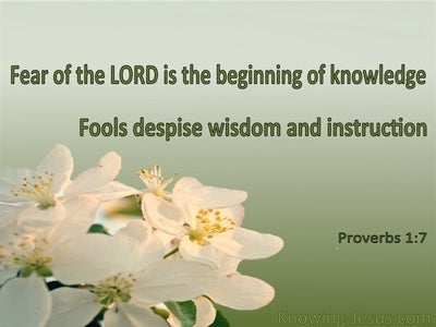 Image result for king solomon verses fools wise