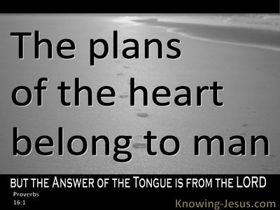 Proverbs 16:1 The Plans Of A Man (black)