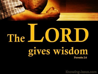 Proverbs 2:6 The Lord Gives Wisdom (black)