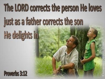 Proverbs 3:12 God Corrects Us (gray)