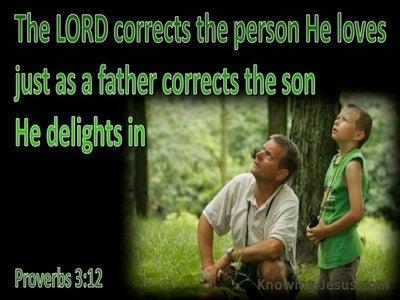 Proverbs 3:12 God Corrects Us (green)