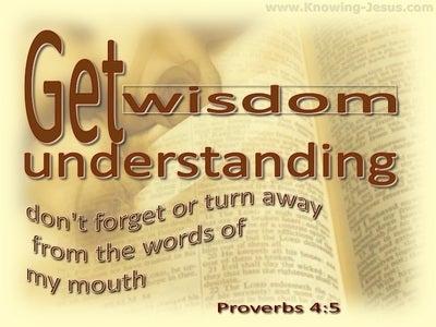 Proverbs 4:5 Get Wisdom Get Understanding (beige)