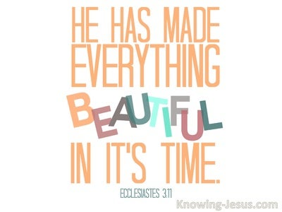 Ecclesiastes 3:11 He Has Made Eerything Beautiful In Its Time (white)
