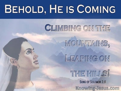 Song of Solomon 2-8 He Comes Climbing The Mountain, Leaping On The Hills (pink)