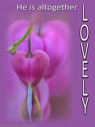 Song of Solomon 5:16 He Is Altogether Lovely (pink)