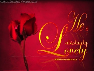 Song of Solomon 5-16 He Is Altogether Lovely (gold)