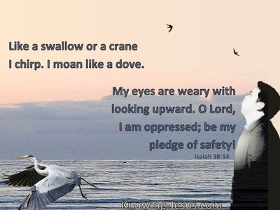 Isaiah 38:14 My Eyes Are Weary With Looking (gray)