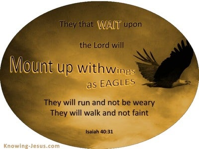 Mount Up With Wings As Eagles (devotional)  (black) - Isaiah 40:31
