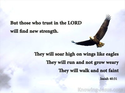 Isaiah 40:31 Those Who Trust In The Lord Will Soar (silver)