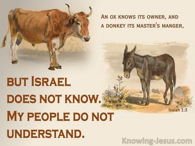 Isaiah 1:3 My People Do Not Understand (beige)