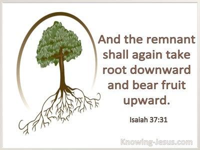 Isaiah 37:31 The Remnant Shall Take Root Downward And Bear Fruit Upward (windows)01:05