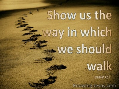 Jeremiah 42:3 Show Us The Way In Which We Should Walk (beige)