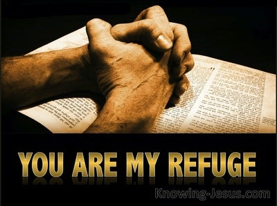 Jeremiah 17:17 You Are My Refuge (beige)