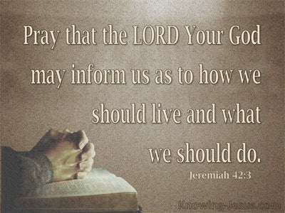 Jeremiah 42:3 Pray That The Lord May Show Us The Way (brown)