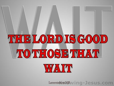 Lamentations 3:25 The Lord Is Good To Those Who Wait (gray)
