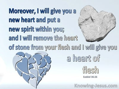 Ezekiel 36:26 A New Heart Of Flesh (blue)