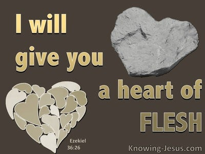 Ezekiel 36:26 A New Heart Of Flesh (brown)