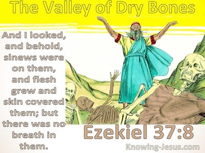 Ezekiel 37:8 The Valley Of Dry Bones (yellow)