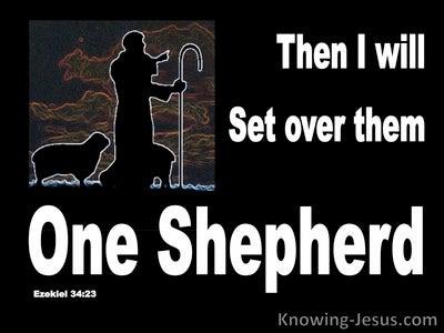 Ezekiel 34:23 He WIll Set Over Them One Shepherd (black)