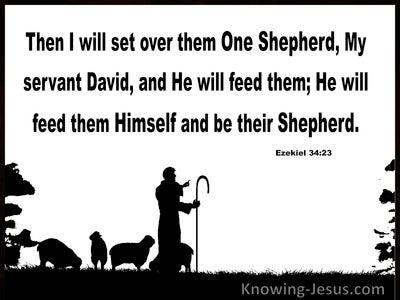 Ezekiel 34:23 He WIll Set Over Them One Shepherd (white)