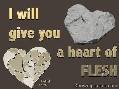 Ezekiel 36:26 A New Heart Of Flesh (brown)