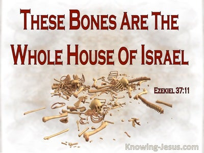 Ezekiel 37:11 These Bones Are The Whole House Of Israel (red)