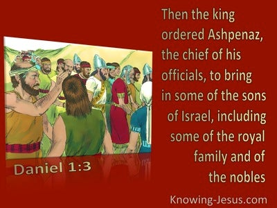 Daniel 1:3 The King Ordered Some Of The Royal Family And Of The Nobles To Be Brought (maroon)