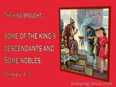 Daniel 1:3 The King Ordered Some Of The Royal Family And Of The Nobles To Be Brought (red)