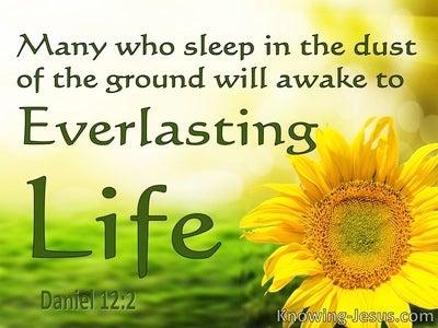 Daniel 12:2  Everlasting Life Or Everlasting Contempt (yellow)