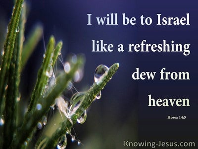 Hosea 14:5 Like Refreshing Dew To Israel (green)