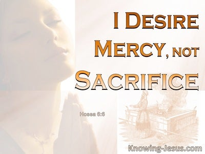 Hosea 6:6 God Desires Mercy Not Sacrifice (orange)