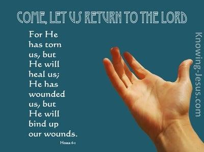 Hosea 6:1 Come, Let Us Return To The Lord (aqua)
