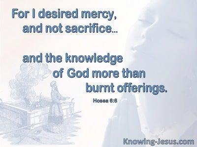 Hosea 6:6 God Desires Mercy Not Sacrifice (blue)