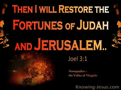 Joel 3:1 In The Day Of The Lord I Will Restore The Fortune Of Judah (orange)