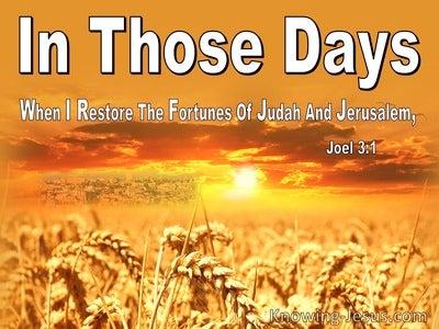 Joel 3:1 When I Restore The Fortunes Of Judah And Jerusalem (white)