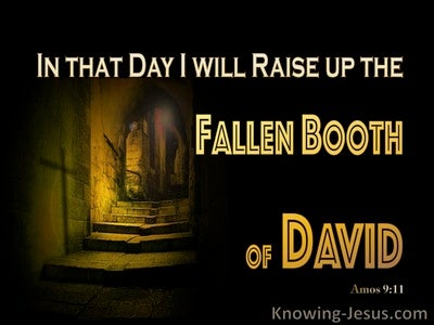 Amos 9:11 In That Day I will Raise Up David's Fallen Booth (yellow)