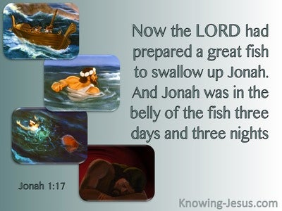 Jonah 1:17 Jonah Was In The Belly Of The Fish (sage)