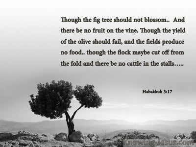 Habakkuk 3:17 Though The Fig tree Should Not Blossom (gray)