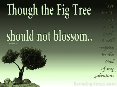 Habakkuk 3:17 Though The Fig tree Should Not Blossom (green)