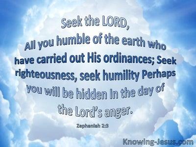 Zephaniah 2:3 Seek The Lord All You Humble (blue)