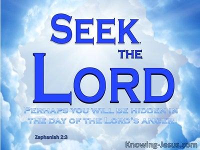 Zephaniah 2:3 Seek The Lord (blue)