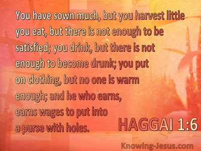 Haggai 1:6 Your Sow Much But Harvest Little (orange)