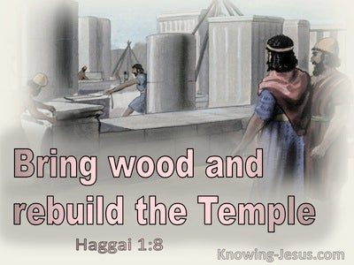 Haggai 1:8 Bring Wood And Rebuild The Temple (gray)
