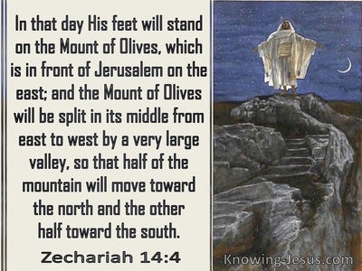 Zechariah 14:4 His Feet Will Stand On The Mount Of Olives (gray)