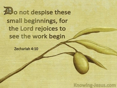 Zechariah 4:10 Do Not Despise These Small Beginnings For The Lord Rejoiced To See The Work Begin (windows)03:30