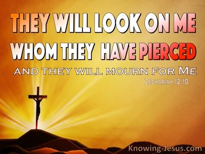 Zechariah  12-10 They Will Look On Me Whom They Pierced (orange)